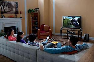The Little Guys Multipurpose TV Room